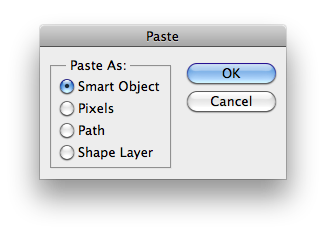 image of Photoshop Paste Dialog Box