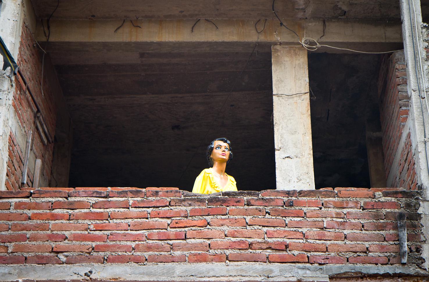 girl in the open window