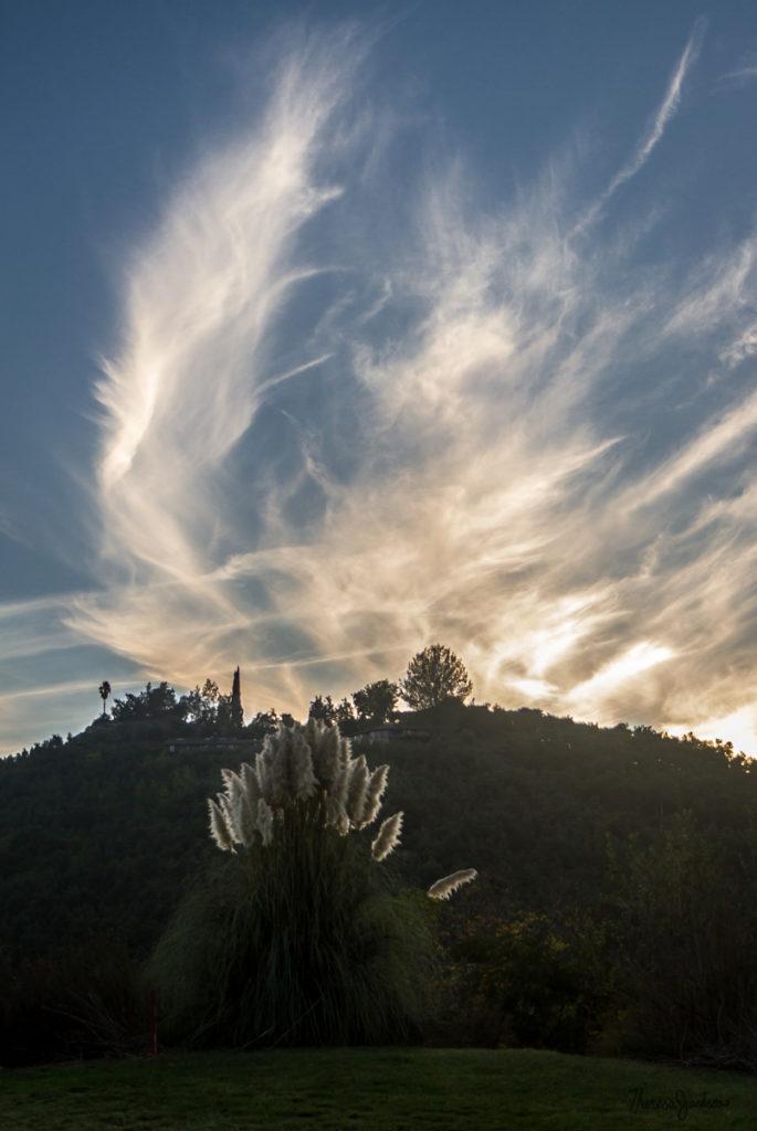 San Pasqual Winter Sky