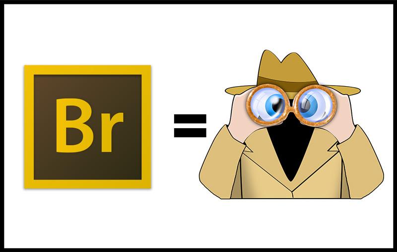 Adobe Bridge equals night vision goggles
