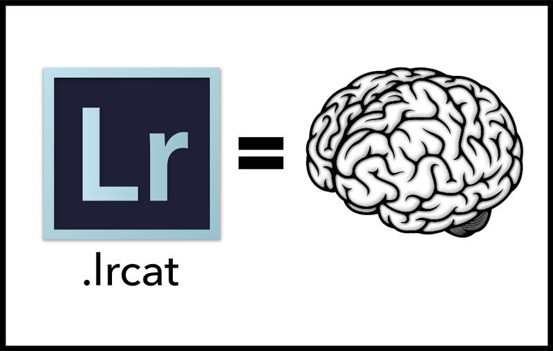 Lightroom is a Brain